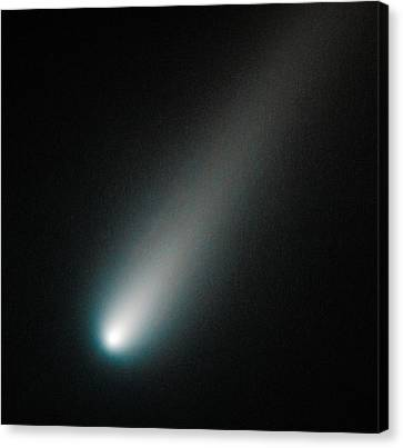 The Universe Canvas Print - Incoming Comet Ison by Marco Oliveira