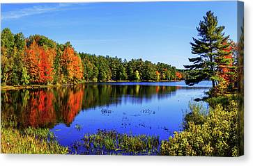 Canvas Print featuring the photograph Incredible by Chad Dutson