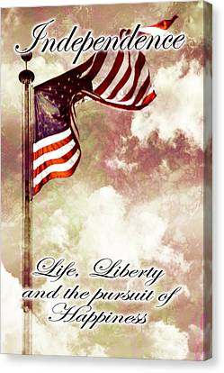Independence Day Usa Canvas Print by Phill Petrovic