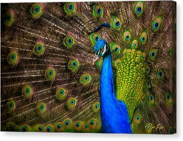Canvas Print featuring the photograph India Blue by Rikk Flohr
