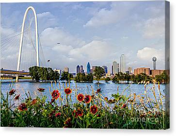 Indian Blanket Overlooking Dallas Canvas Print