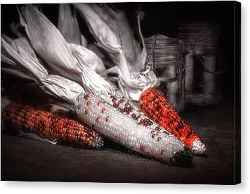 Indian Corn Still Life Canvas Print by Tom Mc Nemar