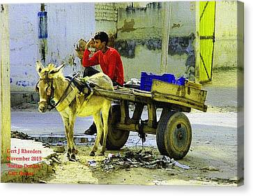 Indian Donkey Cart Owner H A Canvas Print by Gert J Rheeders