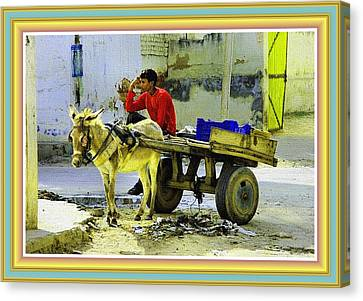 Indian Donkey Cart Owner H B With Decorative Ornate Printed Frame. Canvas Print by Gert J Rheeders