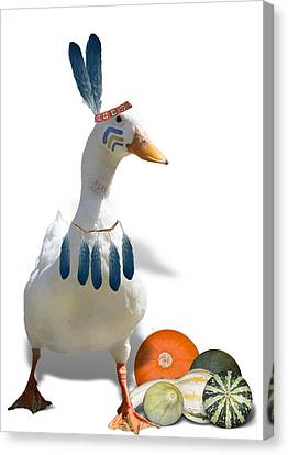Indian Duck Canvas Print