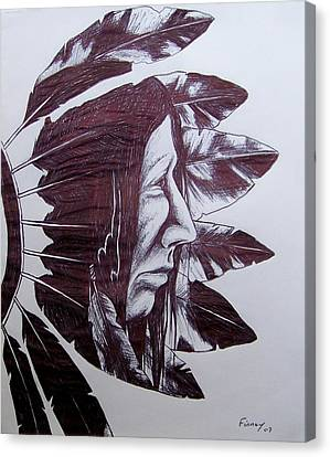 Indian Feathers Canvas Print by Michael  TMAD Finney