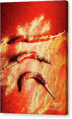 Indian Food Seasoning And Spices Canvas Print