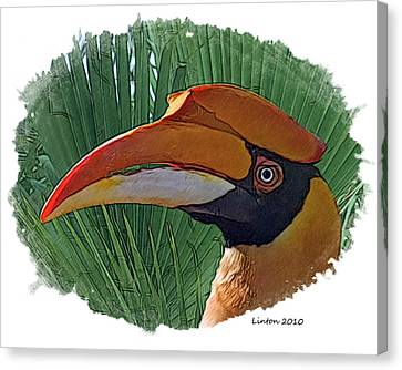 Indian Hornbill Canvas Print by Larry Linton