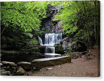 Canvas Print featuring the photograph Indian Ladder Falls by Trina Ansel