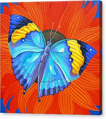 Indian Leaf Butterfly Canvas Print by Jane Tattersfield