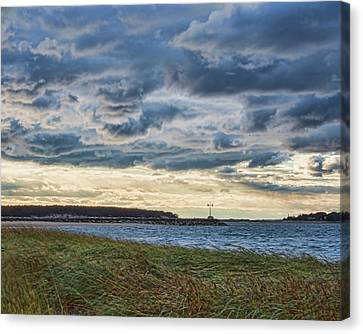 Indian Neck Canvas Print by Karen Regan