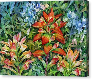 Indian Paintbrush Canvas Print by Hailey E Herrera