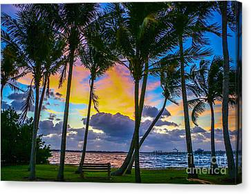 Indian River Sunrise Canvas Print by Tom Claud