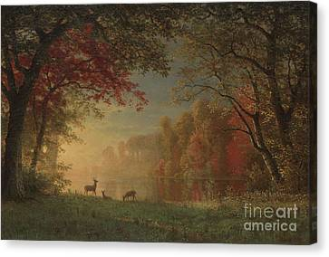 Indian Sunset Deer By A Lake Canvas Print by Albert Bierstadt