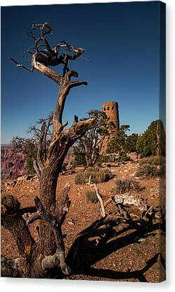 Indian Watchtower At Desert View Canvas Print