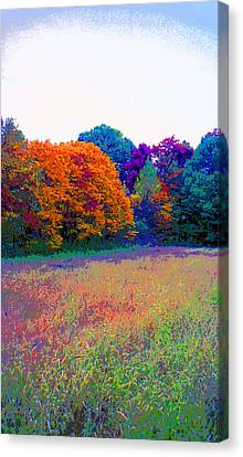 Indiana Autumn Field Image Canvas Print by Paul Price