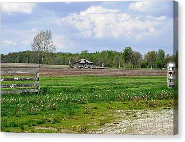 Canvas Print featuring the photograph Indiana Farm by John Black