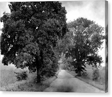 Indiana Road And Trees Canvas Print