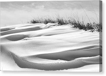 Indiana Snow Canvas Print by Michael L Kimble
