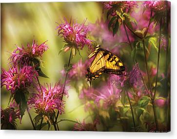 Insect - Butterfly - Golden Age  Canvas Print by Mike Savad