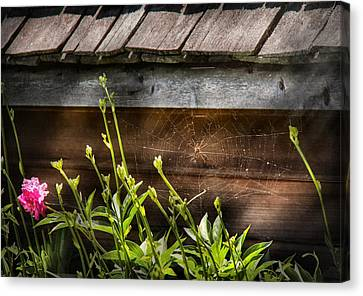 Insect - Spider - Charlottes Web Canvas Print by Mike Savad