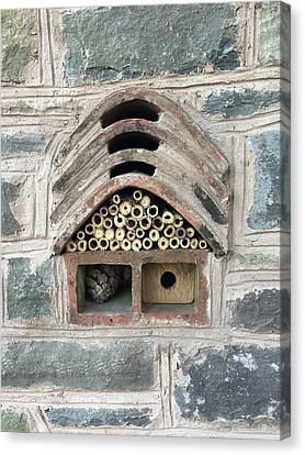 Insect And Bee House Canvas Print by Anita Van Den Broek