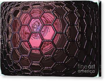 Insect Eye Canvas Print by Patrick Guidato