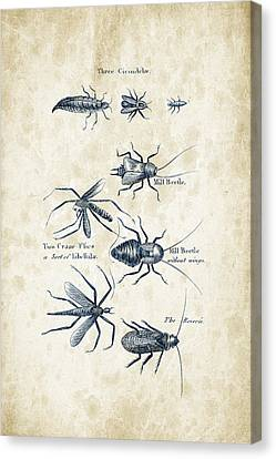 Insects - 1792 - 10 Canvas Print by Aged Pixel