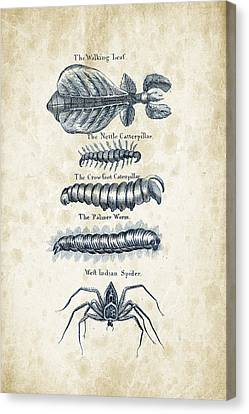 Insects - 1792 - 17 Canvas Print by Aged Pixel