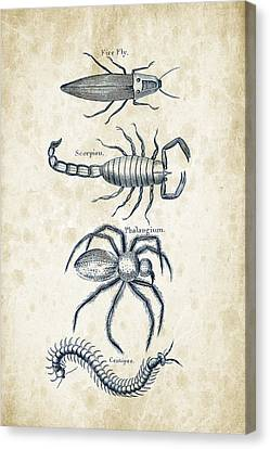 Insects - 1792 - 19 Canvas Print by Aged Pixel