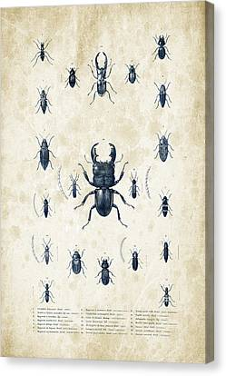 Insects - 1832 - 06 Canvas Print