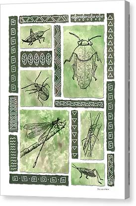Insects Of Hawaii I Canvas Print by Diane Thornton