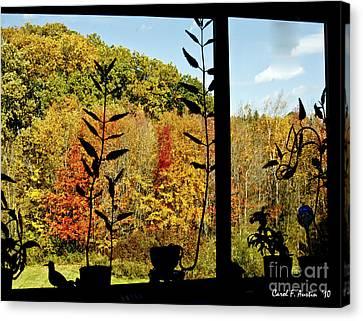 Inside Looking Outside At Fall Splendor Canvas Print by Carol F Austin