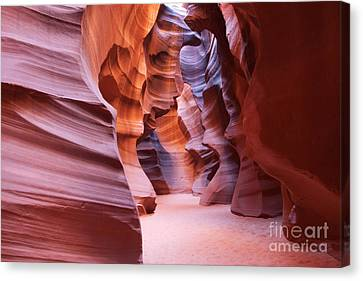 Inside The Canyon Canvas Print by Bob and Nancy Kendrick