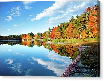 Inspiration Canvas Print by Greg Fortier