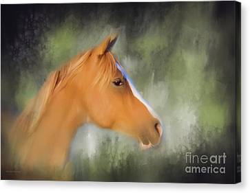 Inspiration - Horse Art By Michelle Wrighton Canvas Print by Michelle Wrighton