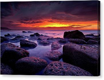 Canvas Print featuring the photograph Inspiration by Jorge Maia