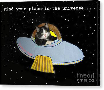 The Universe Canvas Print - Inspirational Words From Teddy The Ninja Cat by Reb Frost