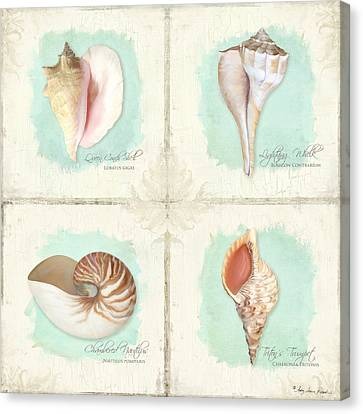 Inspired Coast Quartet - Seashells On Crackle Texture Board Canvas Print by Audrey Jeanne Roberts