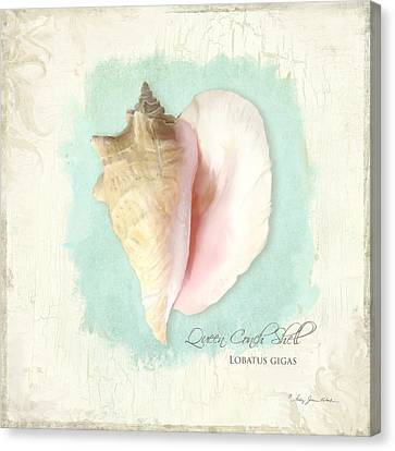 Inspired Coast Viii - Queen Conch Shell On Board Canvas Print by Audrey Jeanne Roberts