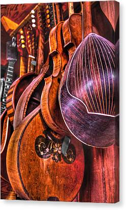 Instrumenti Canvas Print by Frank SantAgata