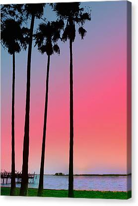 Intercoastal Sunset Canvas Print by Bill Cannon