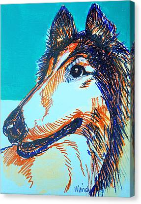 Interested Collie Canvas Print by Melinda Page