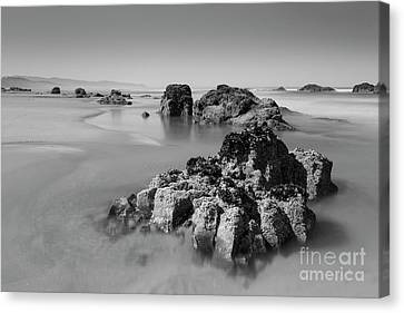 Interesting Rocks In The Water Canvas Print