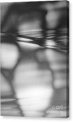 Interference 2 Canvas Print