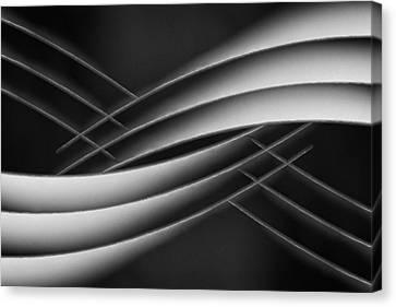 Interlaced Canvas Print