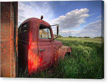 International In The Tall Grass Canvas Print