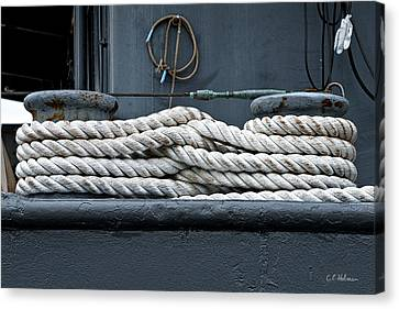 Intertwined Canvas Print by Christopher Holmes