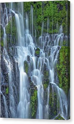 Canvas Print featuring the photograph Intimate Burney Falls by Patricia Davidson