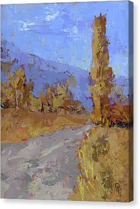 Into Autumn Canvas Print